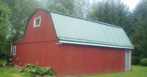 A red barn with a gorgeous green new metal roof installed by me in Rochester